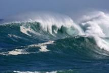 """Des océans """"malades"""" du réchauffement"""