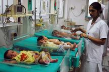 En Inde, une mutation génétique entraîne des maladies cardiaques