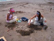 Des restes humains préhistoriques retrouvés dans la pampa argentine