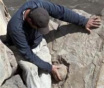 Disparition des dinosaures : une histoire tuée dans l'oeuf
