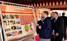 Le programme transversal de l'Initiative nationale pour le développement humain: Un plan intégré pour la promotion sociale