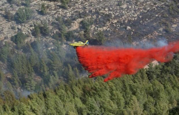 Des avions étrangers à l'aide d'Israël confronté à des feux exceptionnels