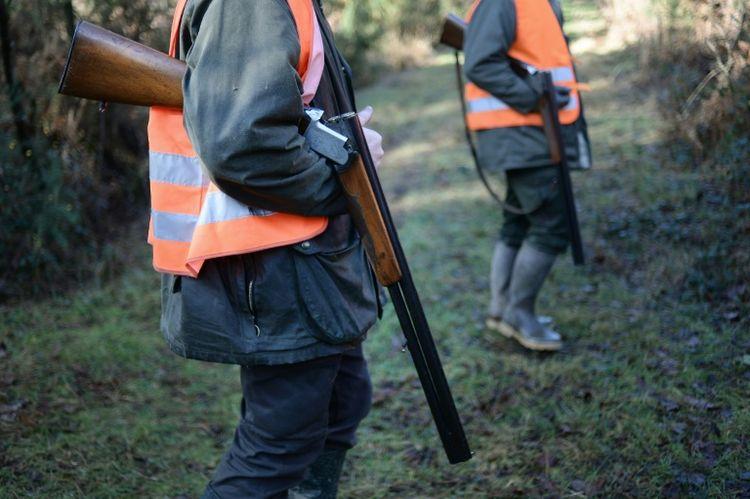 Des chasseurs abattent par mégarde des oiseaux menacés