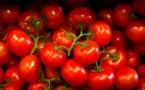 Pêches et tomates en grandes surfaces: le prix n'est pas forcément gage de qualité
