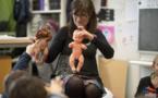 L'éducation sexuelle permet aux jeunes d'être mieux armés pour affronter les phénomènes liés au corps (experts)