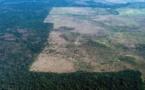 La forêt amazonienne pourrait perdre son plus généreux protecteur