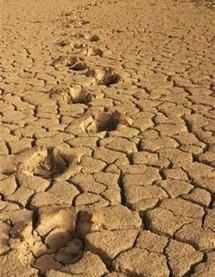 Le futur traité sur le climat critiqué mais prêt à être négocié
