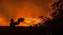 Portugal : 27 morts dans des feux de forêts