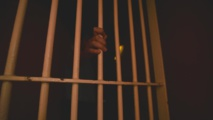 France : 90 détenus liés au terrorisme considérés comme dangereux