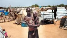 Sahel : Environ 29,2 millions de personnes sont en insécurité alimentaire (FAO)