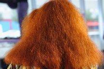 Création d'un fil électrique 10.000 fois plus fin qu'un cheveu