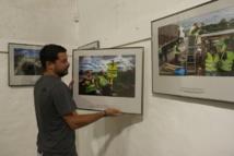Au festival Visa pour l'image, les photos des soubresauts du monde