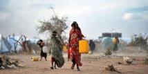 Les crises alimentaires risquent de se multiplier dans le monde (ONU/UE)