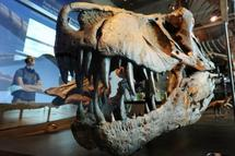 Au pays des dinosaures, le tyrannosaure était bien le roi de la morsure