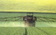 L'Agence de développement agricole : maître d'œuvre du Plan Maroc vert