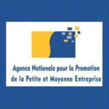 L'Agence nationale pour la promotion de la petite et moyenne entreprise