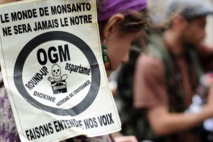 Royal interdit la vente libre en jardineries du Roundup de Monsanto