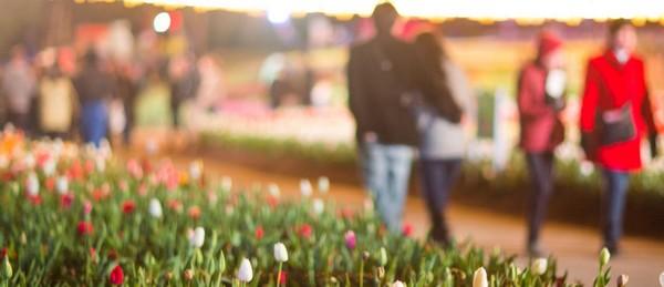 Floriade 2017: Un million de fleurs pour célébrer l'arrivée du printemps à Canberra