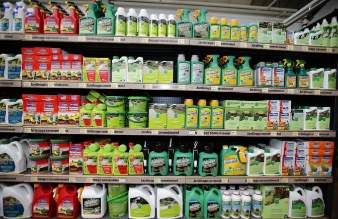 Glyphosate: La Commission européenne propose une prorogation de 5 ans