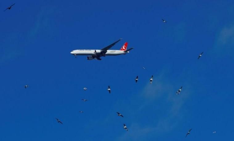 Turkish Airlines veut acheter 30 Airbus et 30 Boeing