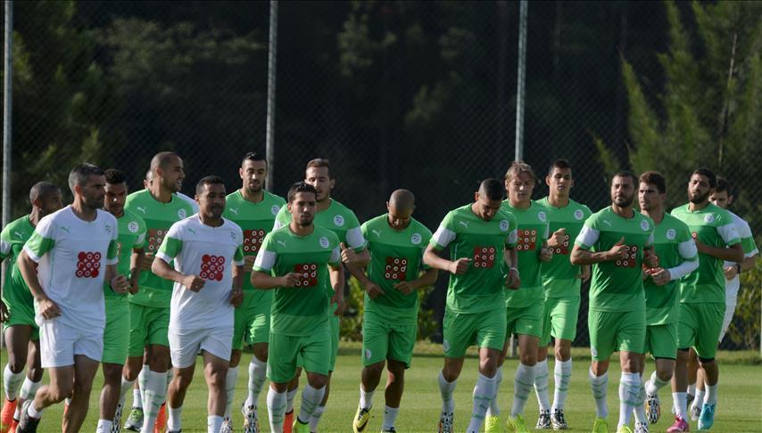 Foot/Algérie : Djamel Belmadi nouveau sélectionneur
