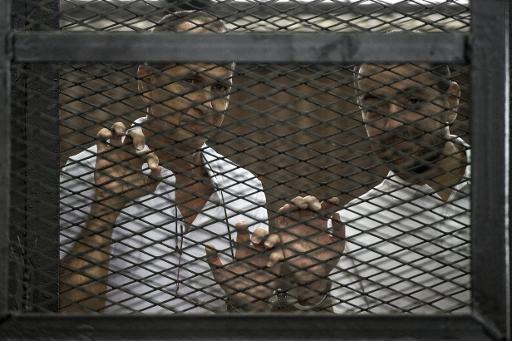 Peter Greste et Mohamed Baher