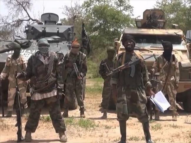 Cameroun : L'armée neutralise des mines plantées par Boko Haram (source militaire à Anadolu)