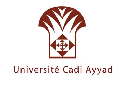 L'UCA de Marrakech pionnière au niveau national en termes des publications scientifiques et de coopération internationale
