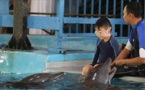 Indonésie: Traiter l'autisme en nageant avec les dauphins