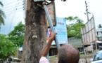 Au Bangladesh, le combat d'un homme pour sauver les arbres un par un