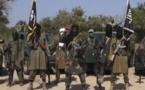 Boko Haram, de la secte islamiste au groupe armé (REPERES)