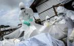 RDC / Ebola : le bilan s'élève à 1773 décès