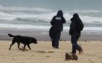 Cocaïne: comment expliquer la marée blanche sur les plages françaises ?