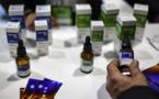 Du cannabis à usage médical dans les pharmacies au Brésil