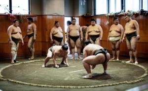 Le sumo, un sport des plus japonais aux protagonistes bien particuliers